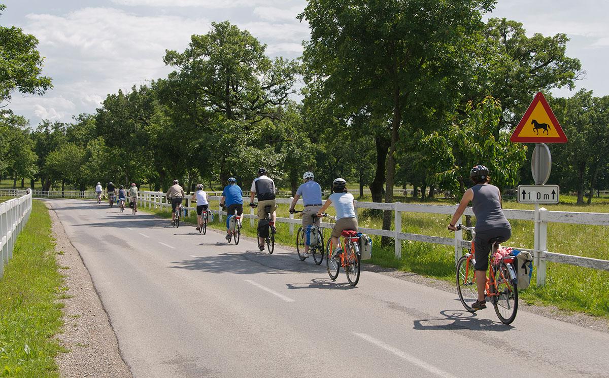 Emerald cycling trip in Slovenia.