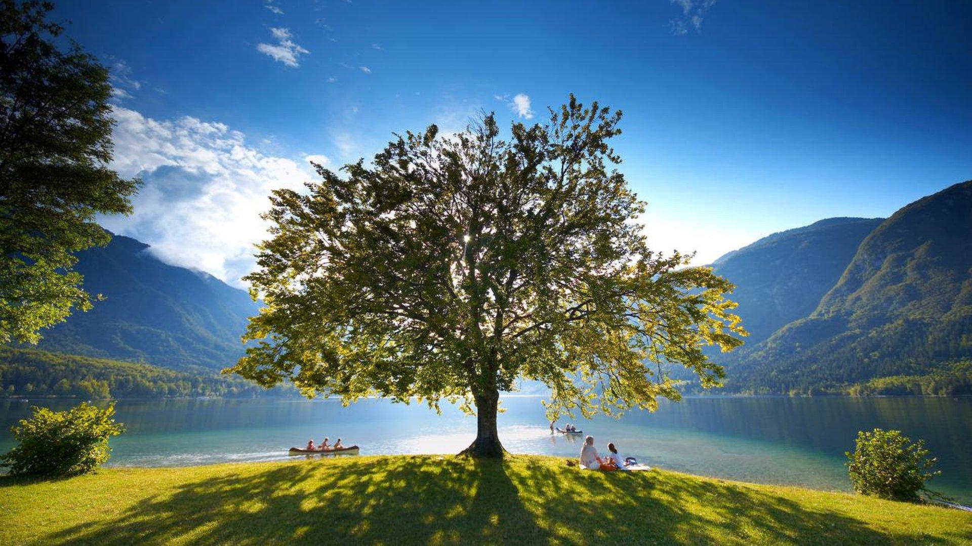 Lake Bohinj - day trips from Ljubljana