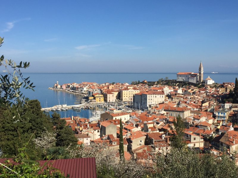 Discover Slovenian Coast Private Guided Tours