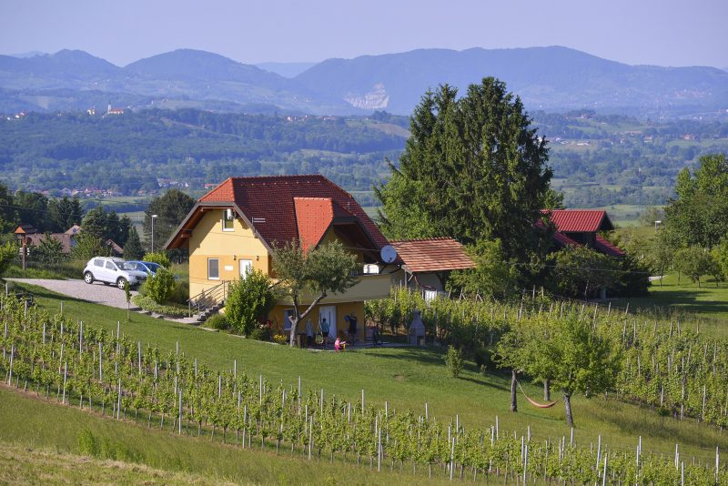 Perfect Family Escape to the Thermal Pannonian Slovenia